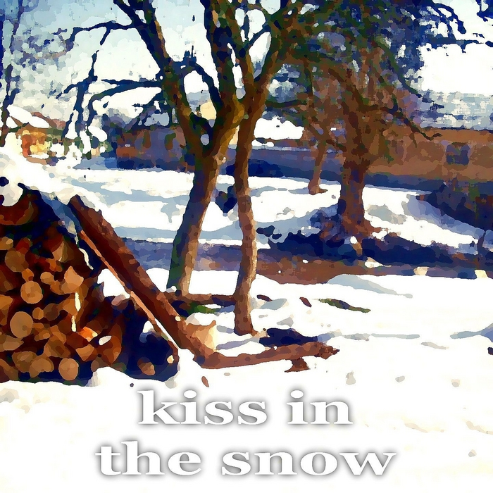 VARIOUS - Kiss In The Snow (20 Top Techhouse Tunes In C Key)