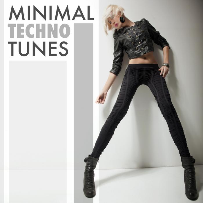 VARIOUS - Minimal Techno Tunes