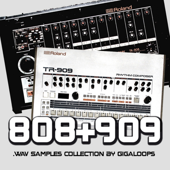 GIGALOOPS - Dance Drum Collection (Sample Pack WAV)