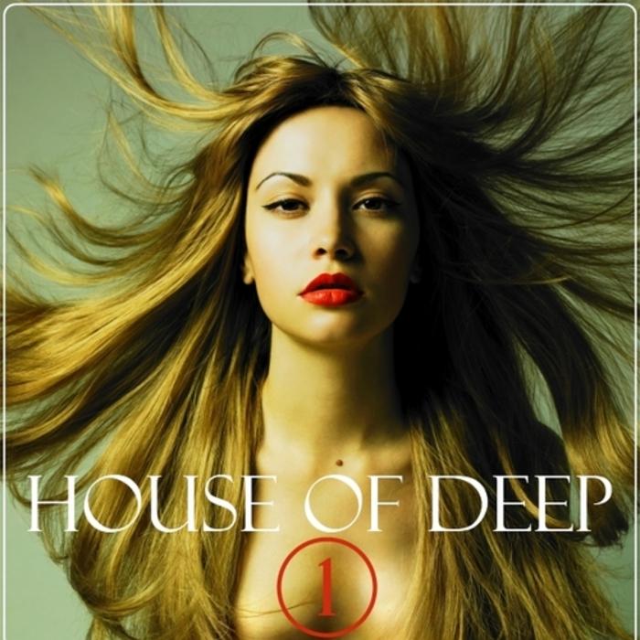 VARIOUS - House Of Deep Vol 1