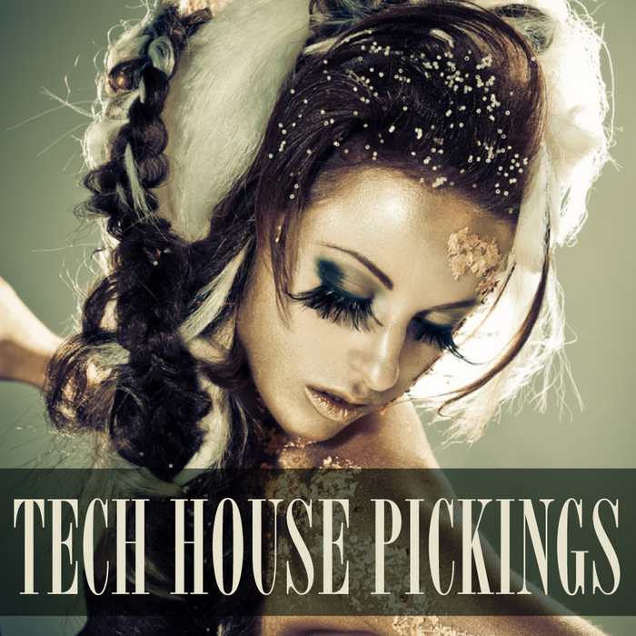 VARIOUS - Tech House Pickings