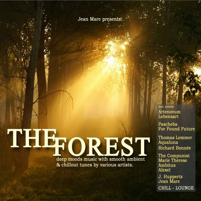 VARIOUS - The Forest Chill Lounge (Deep Ambient Chillout Lounge Electronic Downbeat Moods)
