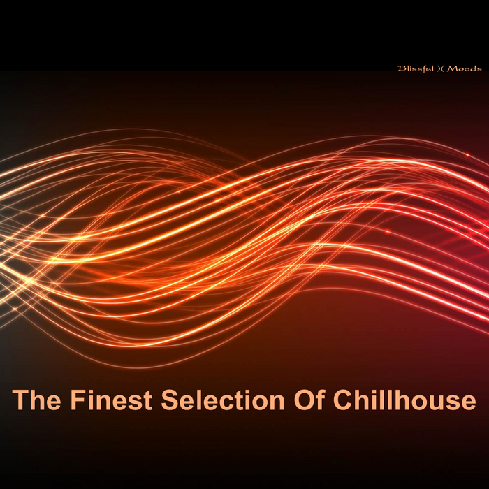 VARIOUS - The Finest Selection Of Chill House Vol 3