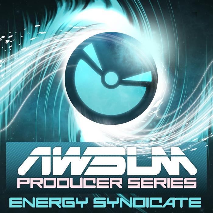 ENERGY SYNDICATE/VARIOUS - AWsum Producer Volume 1: Energy Syndicate (unmixed tracks)