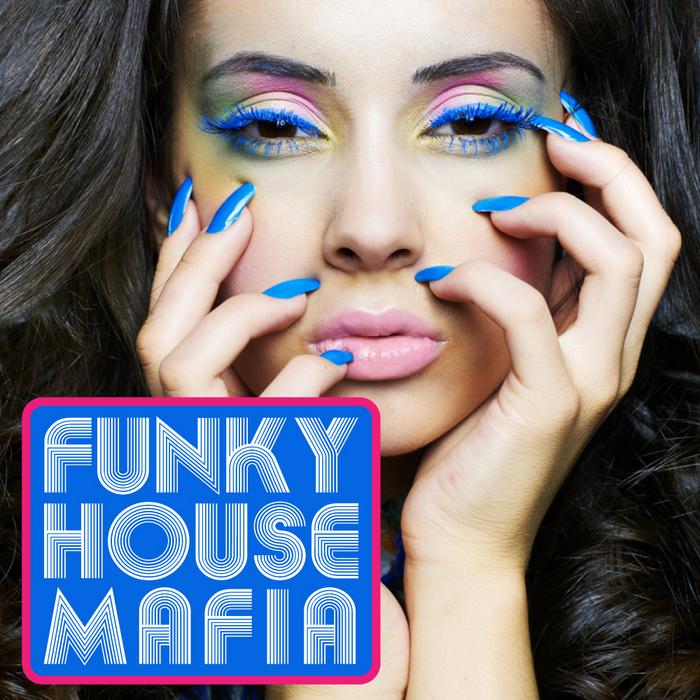 VARIOUS - Funky House Mafia