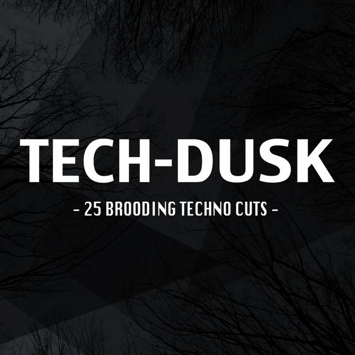 VARIOUS - Tech-Dusk: 25 Brooding Techno Cuts