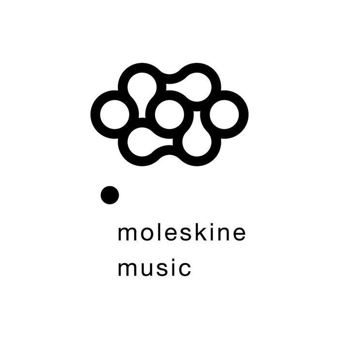 VARIOUS - Moleskines #1