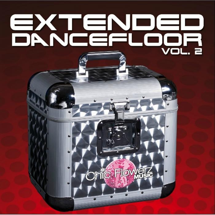 VARIOUS - Extended Dancefloor Vol 2