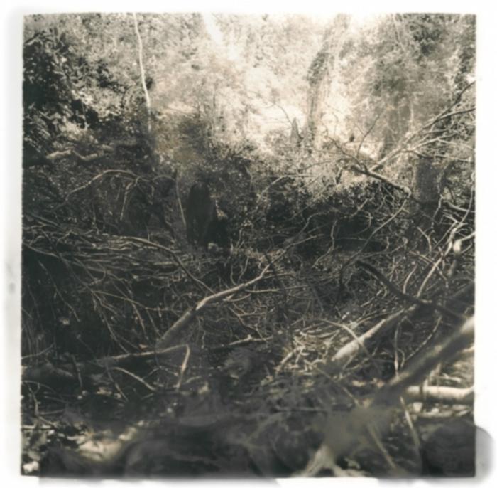 NONAMAKA, Allan - The Creeper Grows EP