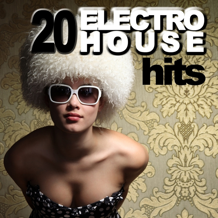 VARIOUS - 20 Electro House Hits