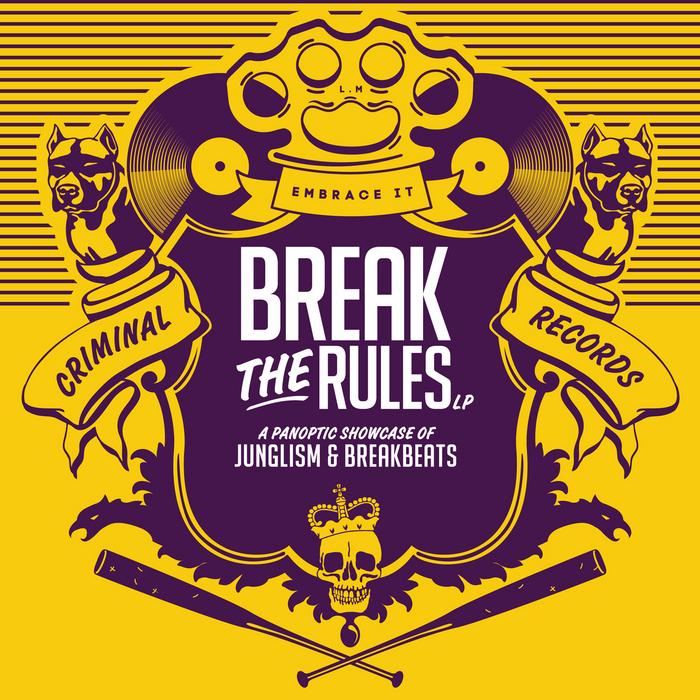 VARIOUS - Break The Rules