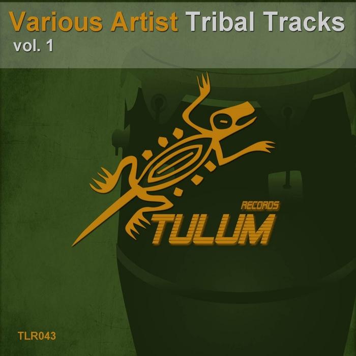 VARIOUS - Tribal Tracks Vol 1