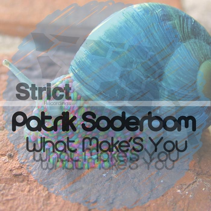 SODERBOM, Patrik - What Make's You