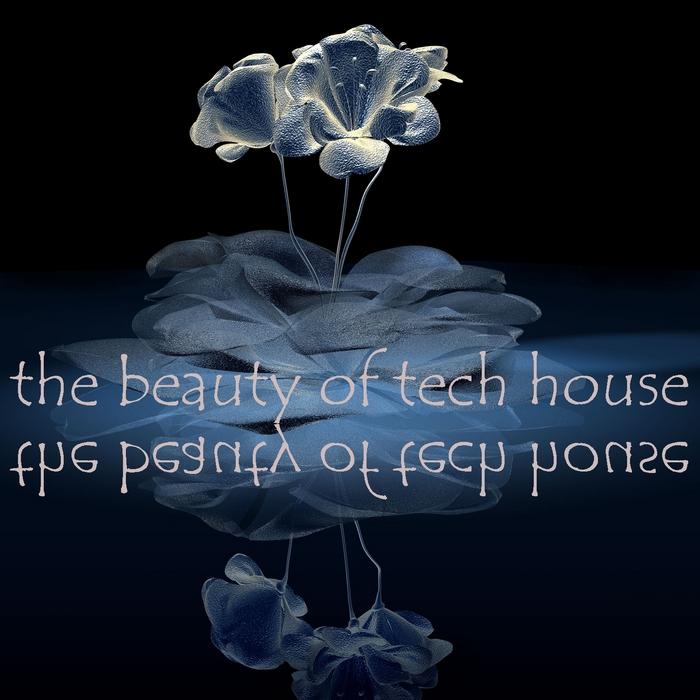 VARIOUS - The Beauty Of Tech House (Gorgeous Techno & Minimal House Diamonds)