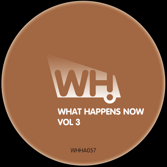 ABRAM, Stanny/LLOYD TRIMMER/JESUS PABLO/ROBOT NEEDS OIL/CHRIS RAWLES - What Happens Now Vol 3