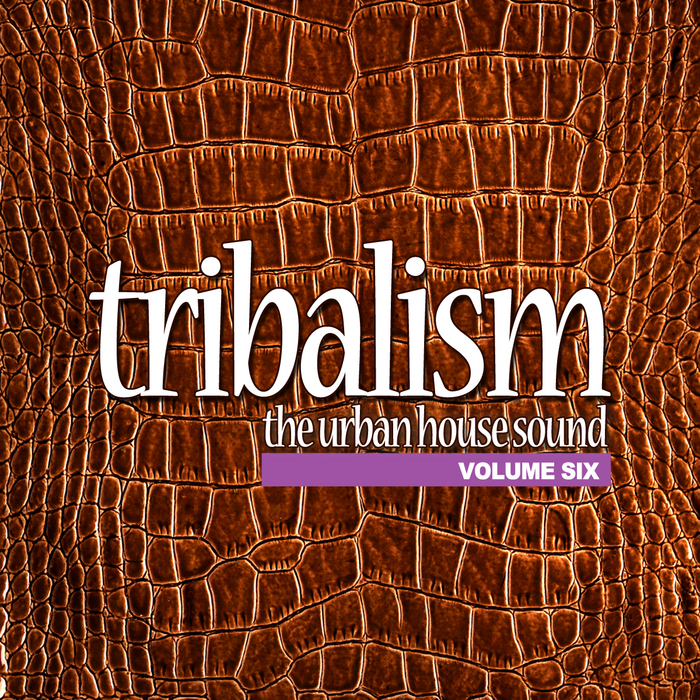 VARIOUS - Tribalism Vol 6: The Urban House Sound