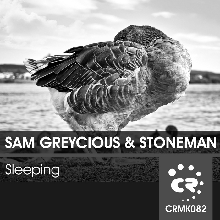 GREYCIOUS, Sam/STONEMAN - Sleeping