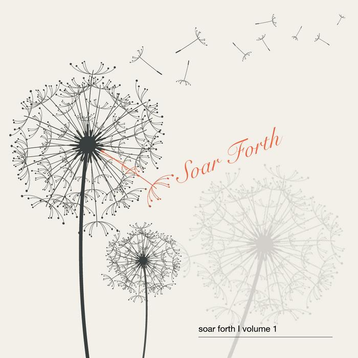 VARIOUS - Soar Forth Volume 1