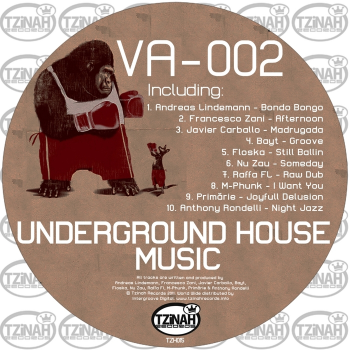 VARIOUS - Underground House Music 002
