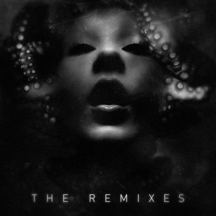VARIOUS - The Remixes
