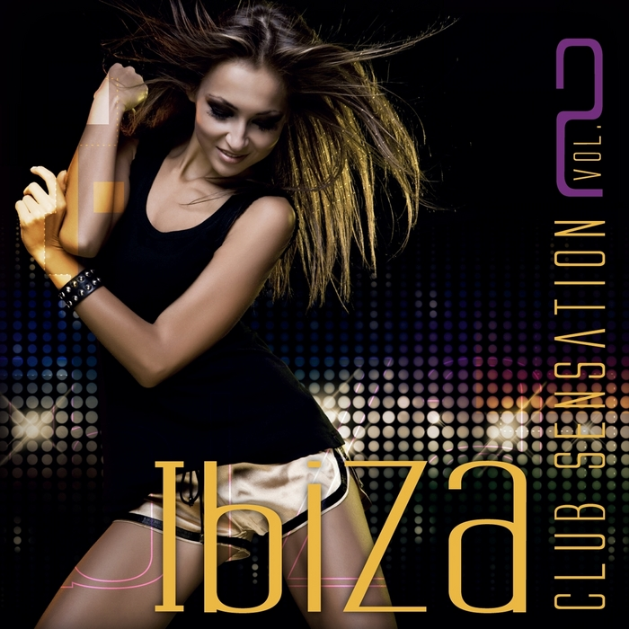 VARIOUS - Ibiza Club Sensation Vol 2