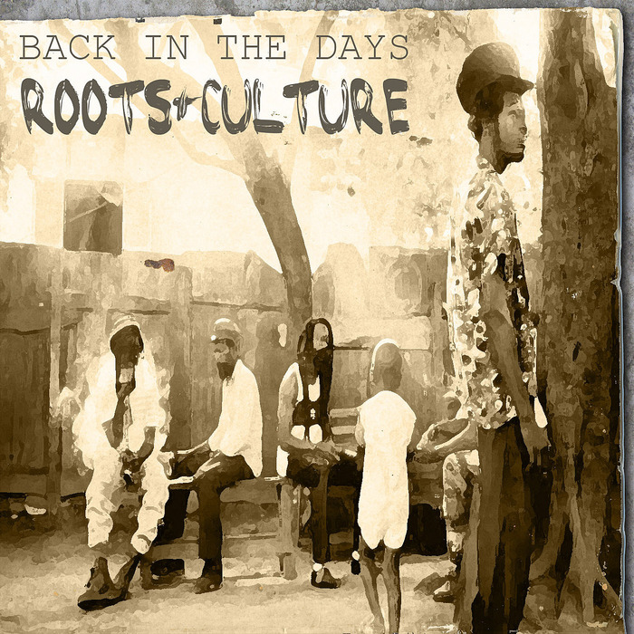 VARIOUS - Back In The Days Roots & Culture Platinum Edition