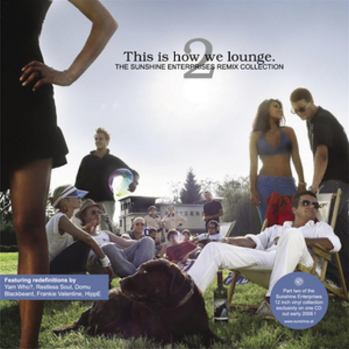 VARIOUS - This Is How We Lounge 2