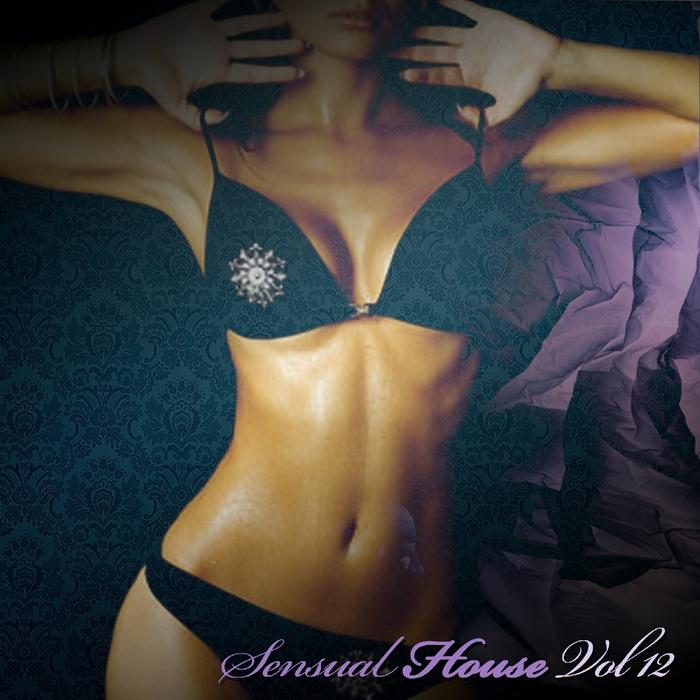 VARIOUS - Sensual House Vol 12