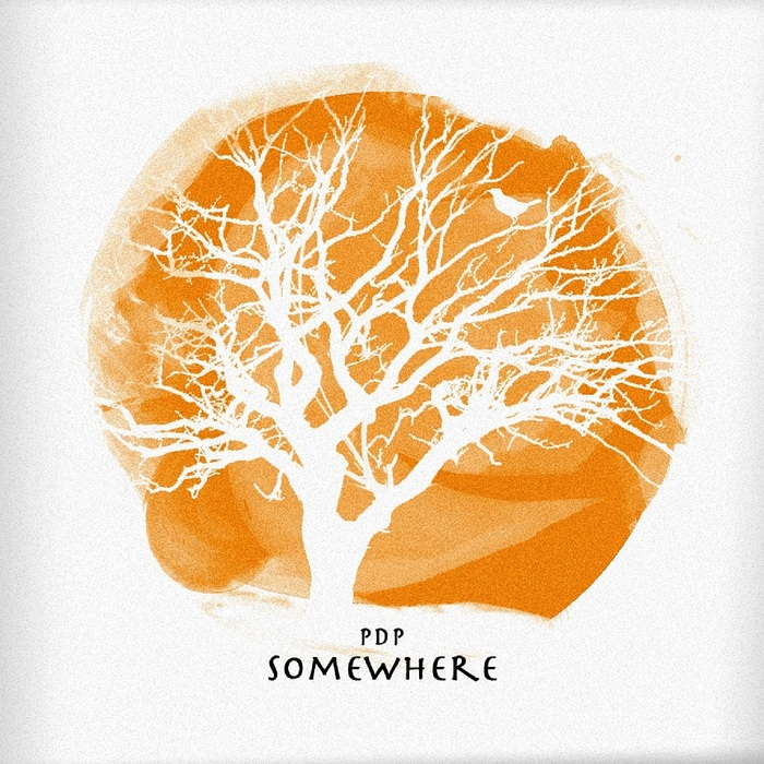 PDP - Somewhere