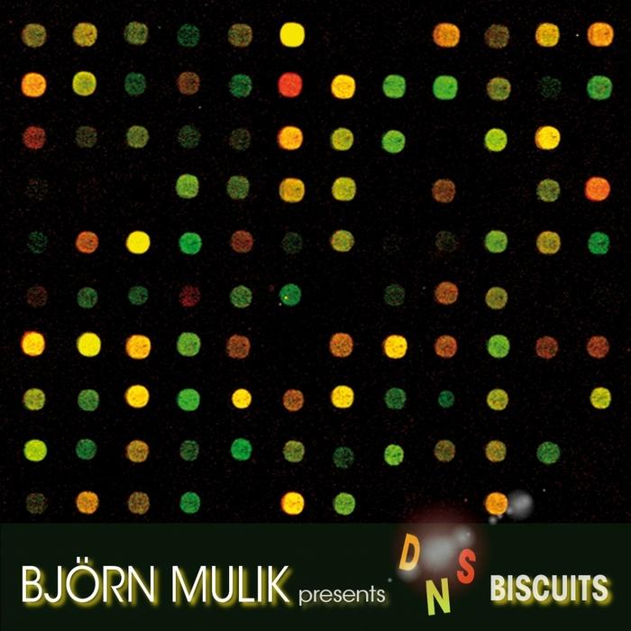 MULIK, Bjoern - The DNS Biscuits