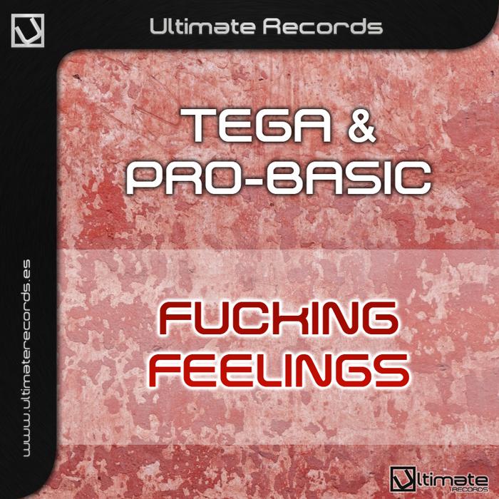 DJ TEGA/DJ PRO BASIC - Fucking Feelings