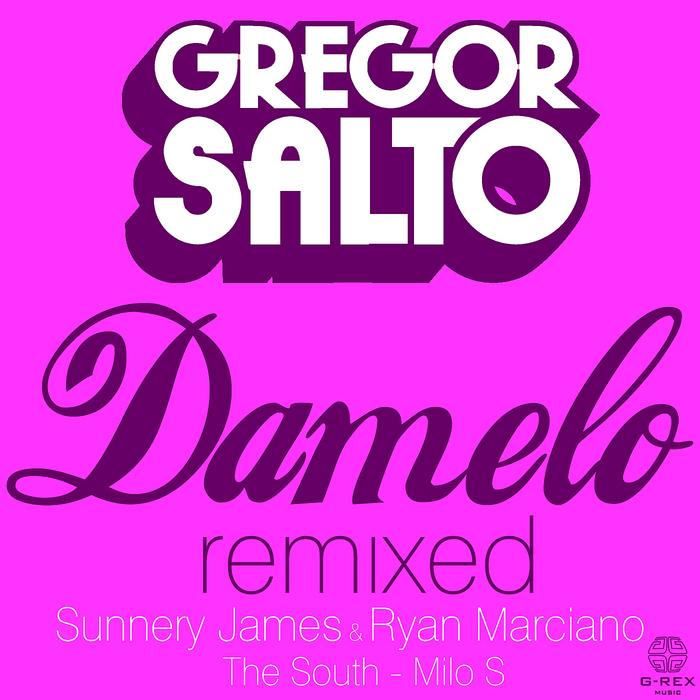 SALTO, Gregor - Damelo (remixed)
