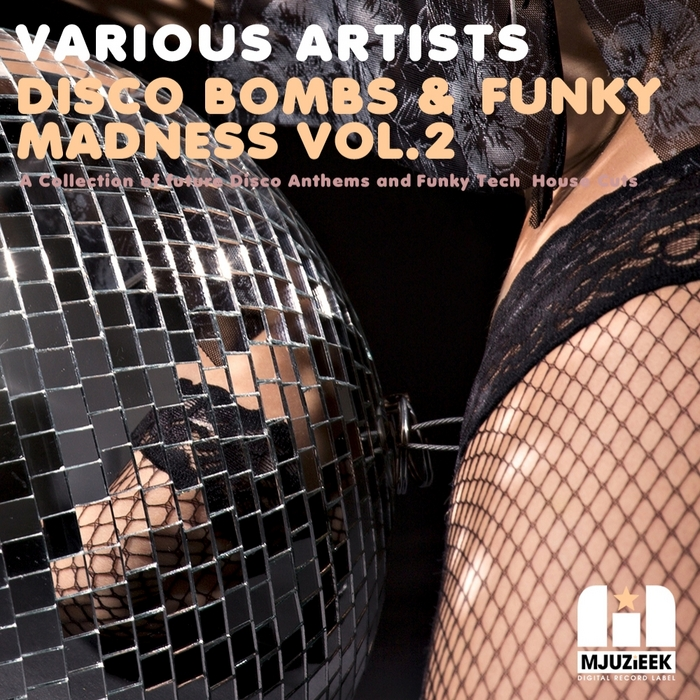 VARIOUS - Disco Bombs & Funky Madness Vol.2