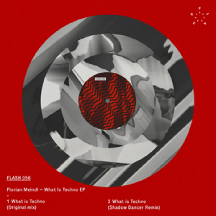 MEINDL, Florian - What Is Techno