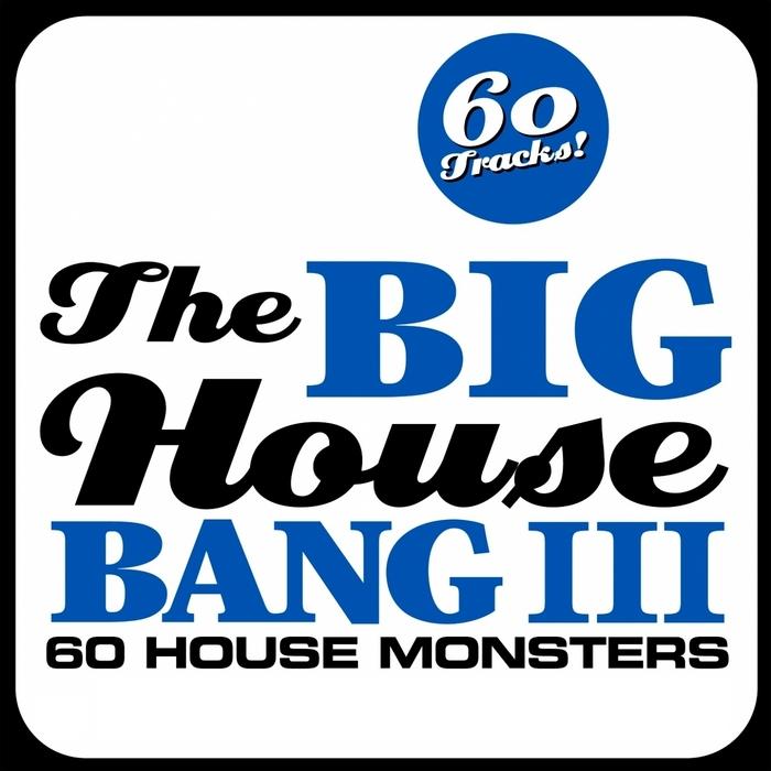 VARIOUS - The Big House Bang! Vol 3 (60 House Monsters)