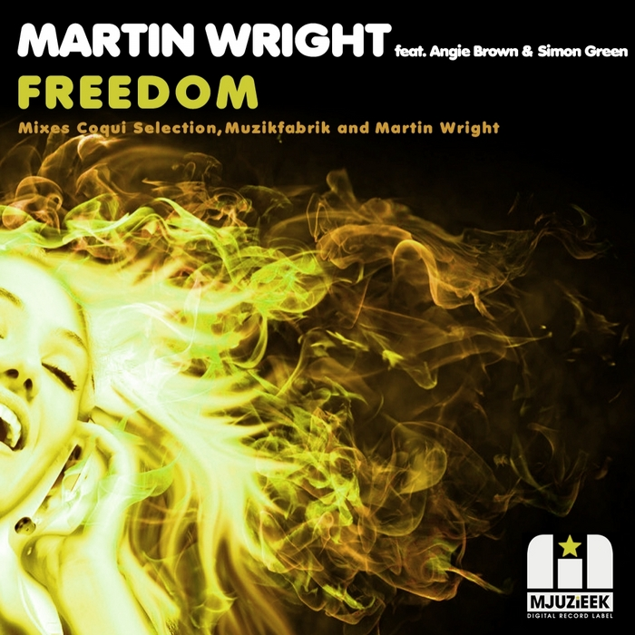 WRIGHTT, Martin feat ANGIE BROWN/SIMON GREEN - Freedom