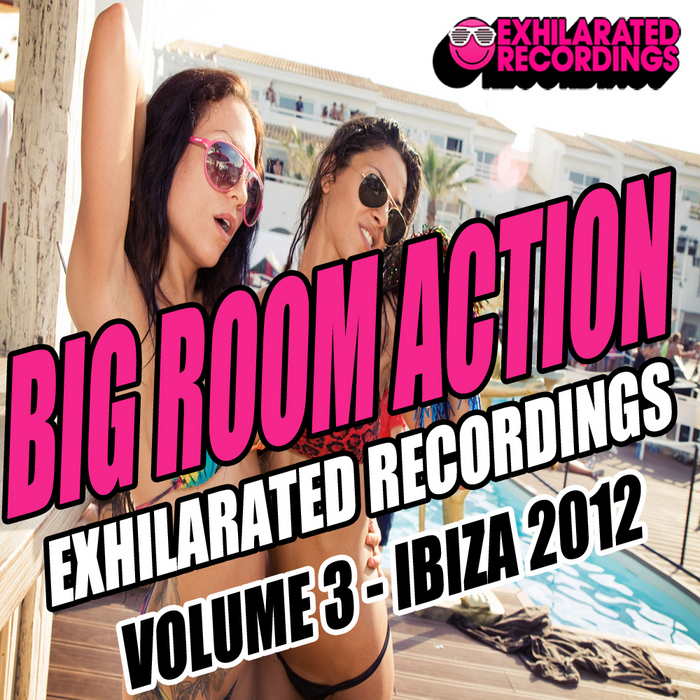 VARIOUS - Big Room Action Volume 3 Ibiza 2012