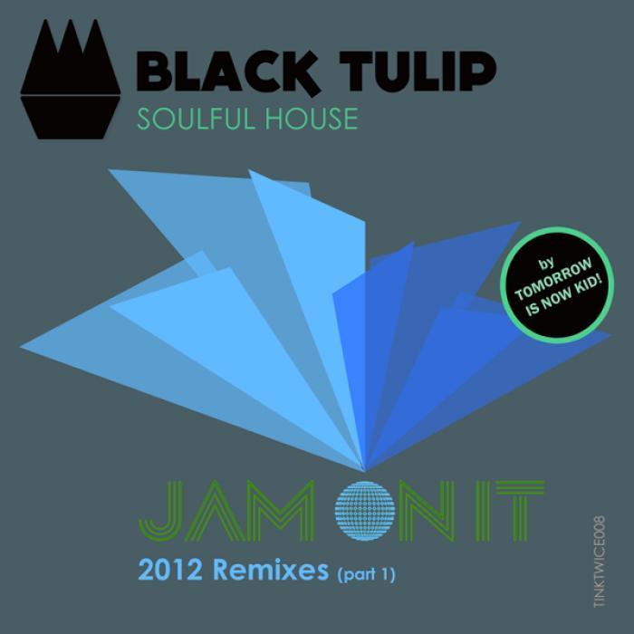 BLACK TULIP feat WENDELL MORRISON - Jam On It (2012 remixes Part 1)