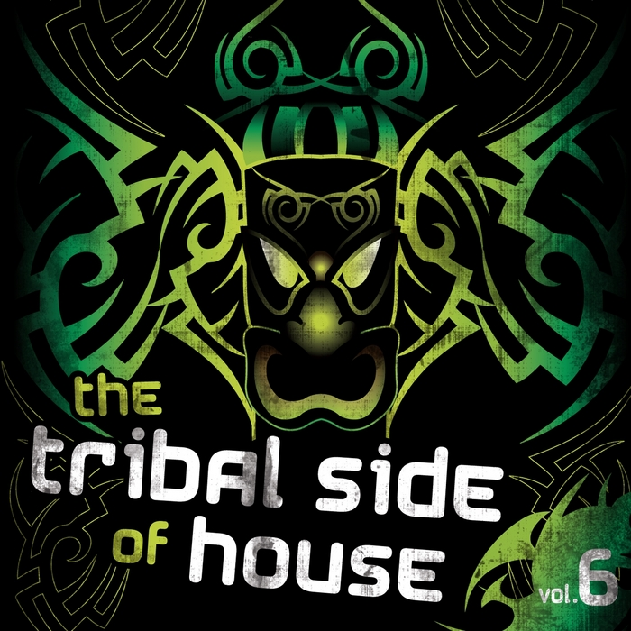 VARIOUS - The Tribal Side Of House Vol 6