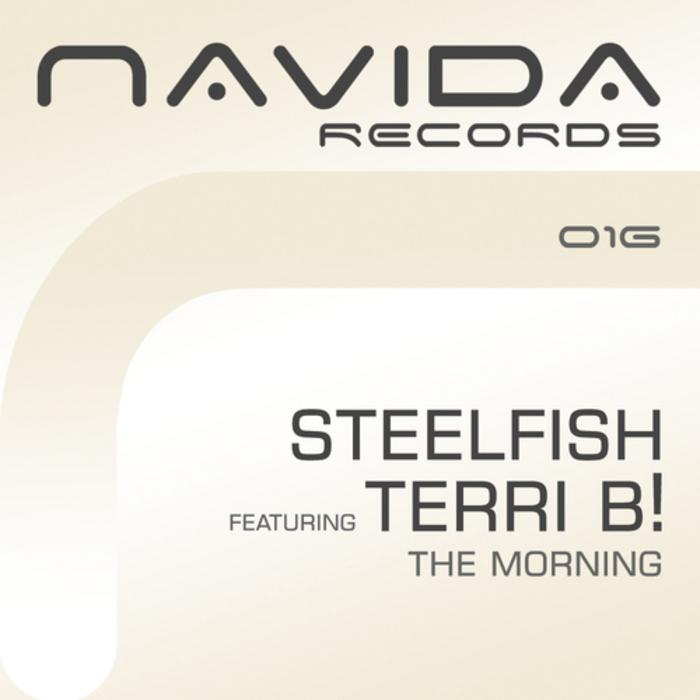 STEELFISH feat TERRI B - The Morning