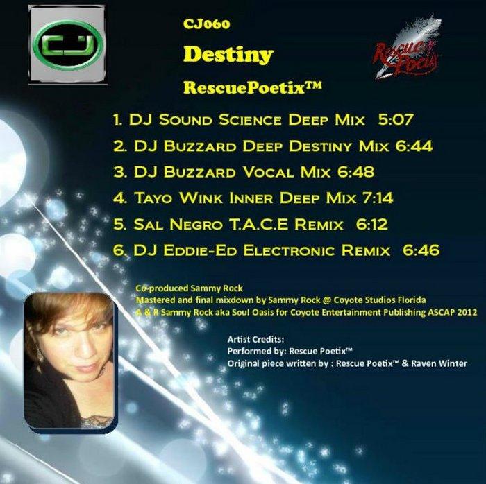 RESCUEPOETIX - Destiny