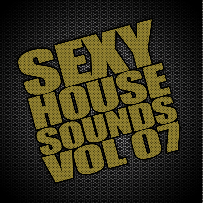 VARIOUS - Sexy House Sounds Vol 7