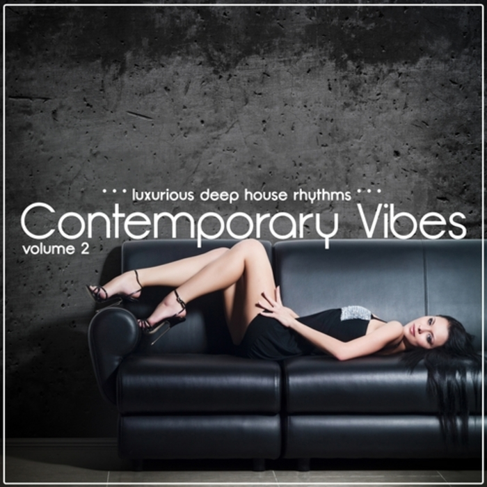 VARIOUS - Contemporary Vibes Vol 2