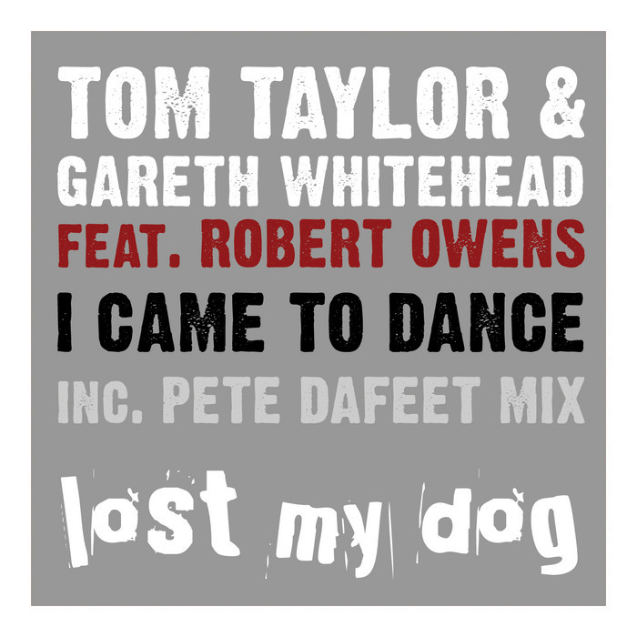 TAYLOR, Tom/GARETH WHITEHEAD feat ROBERT OWENS - I Came To Dance