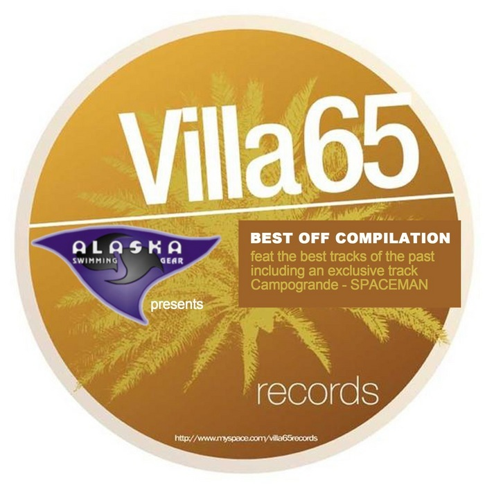 VARIOUS - The Best Of Villa 65 Records