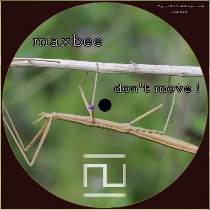 MAXBEE - Don't Move!