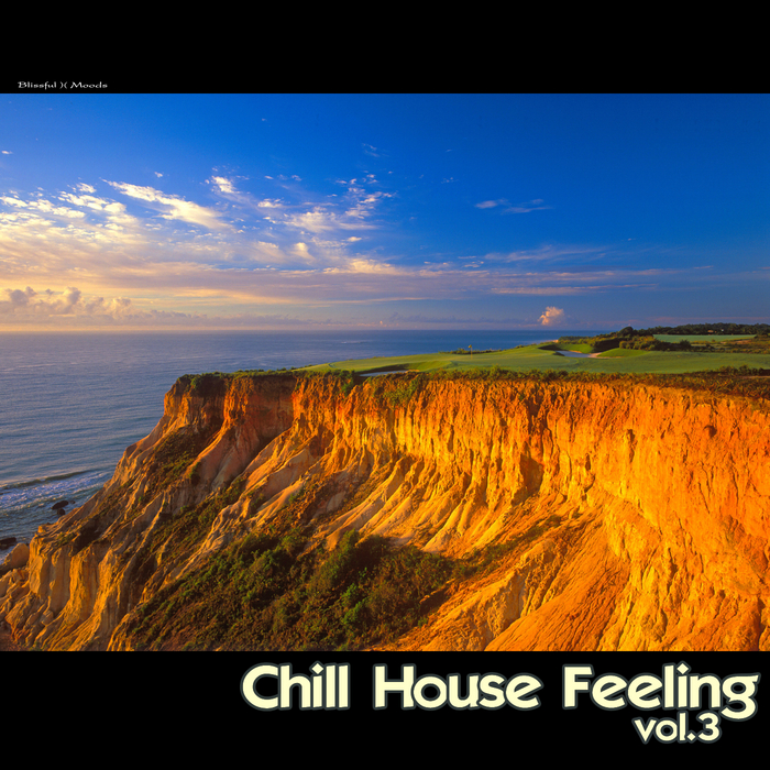 VARIOUS - Chill House Feeling Vol 3
