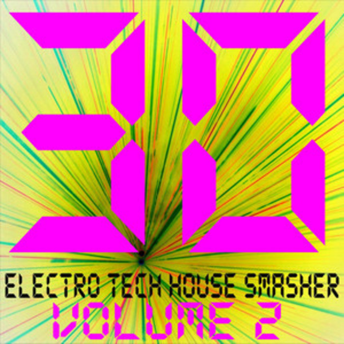 VARIOUS - 30 Electro Tech House Smasher Vol 2
