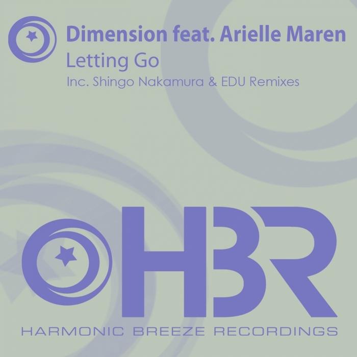 DIMENSION feat ARIELLE MAREN - Letting Go