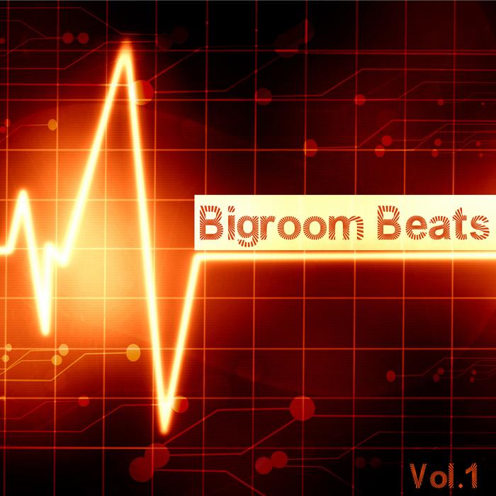 VARIOUS - Bigroom Beats Vol 1